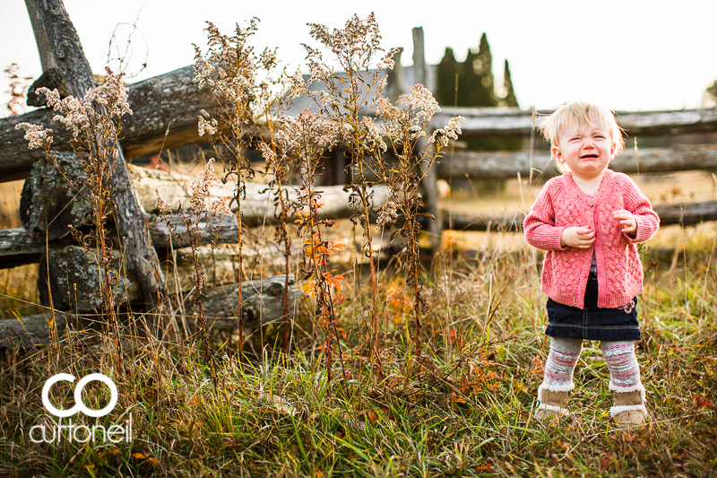 Sault Ste Marie Baby Photography - Jocelyn at 12 months - sneak peek from Mockingbird Hill Farm