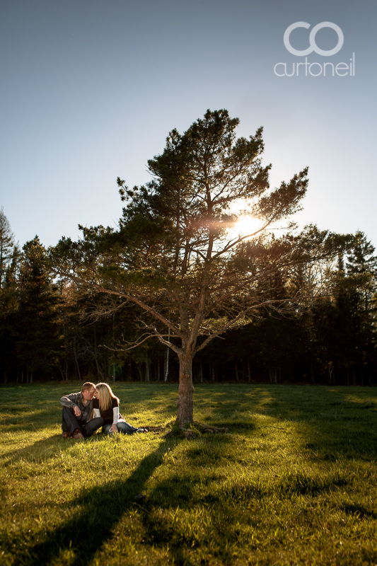 Sault Ste Marie Engagement Photography - Lisa and Steve - sneak peek, open field, farm, single tree, Bruce Mines
