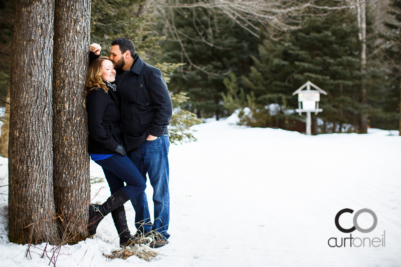 Sault Ste Marie Engagement Photography - Sandra and Caleb - sneak peek at Stokely Creek Lodge, cross country ski, trees, winter, cold
