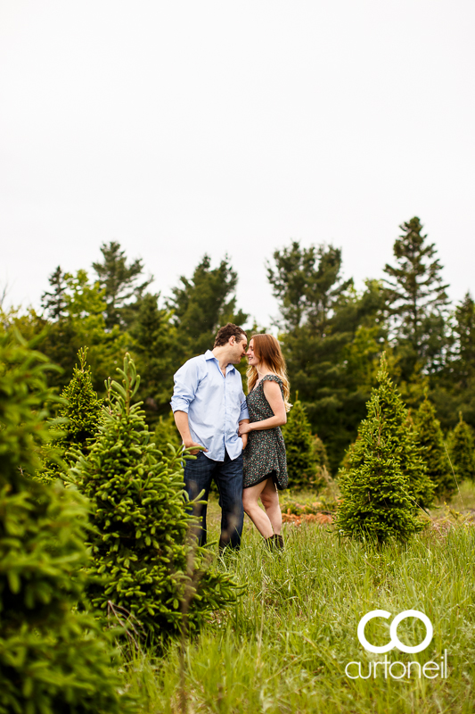 Sault Ste Marie Engagement Photography - Steph and Dan - Mockingbird Hill Farm, summer, rustic