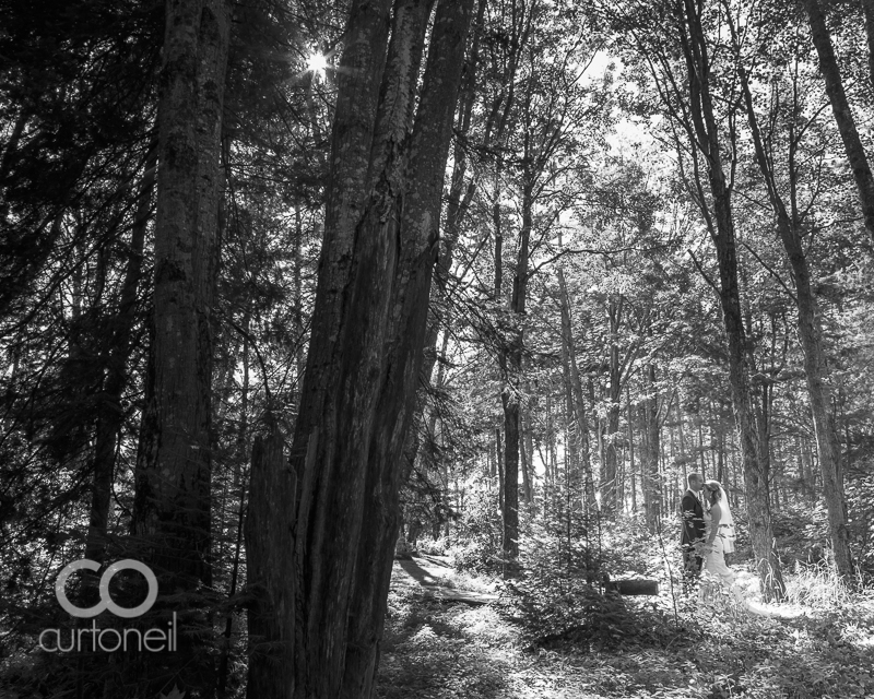Sault Ste Marie Wedding Photography - Shannon and Phil - sneak peek, summer, Ebony Acres, trees, forest