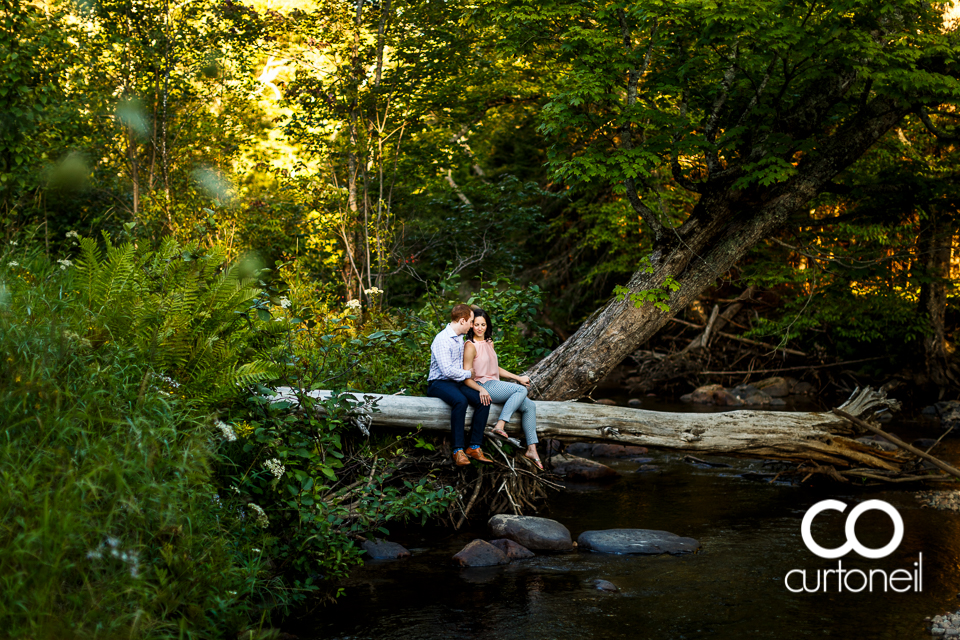 Ashley and Dante - Sault Engagement - sneak, Wishart Park, tree, water